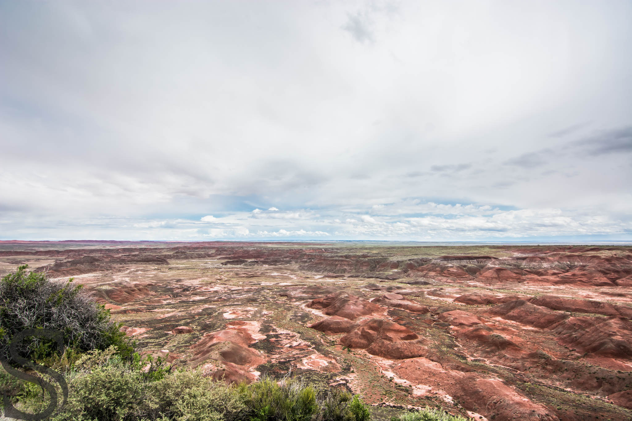 View from Tawa Point Overlook in Petrified Forest National Park