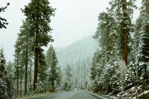 atlanta to seattle road trip